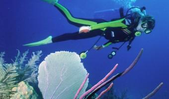 Extending Bottom Time How Technique Extends Your Dives